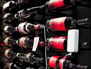 WSTC wine probe.jpg